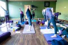 Lyne Yoga - Hips Workshop